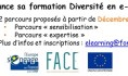e learning diversité